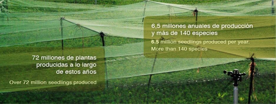 Producción de 6,5 millones anuales y más de 140 especies