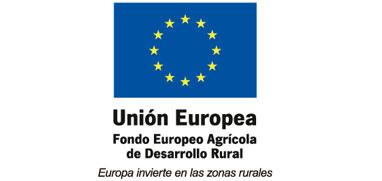 union europea feder logo